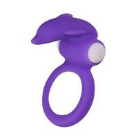 Dolphin ring - Penisrengas vibralla, violetti